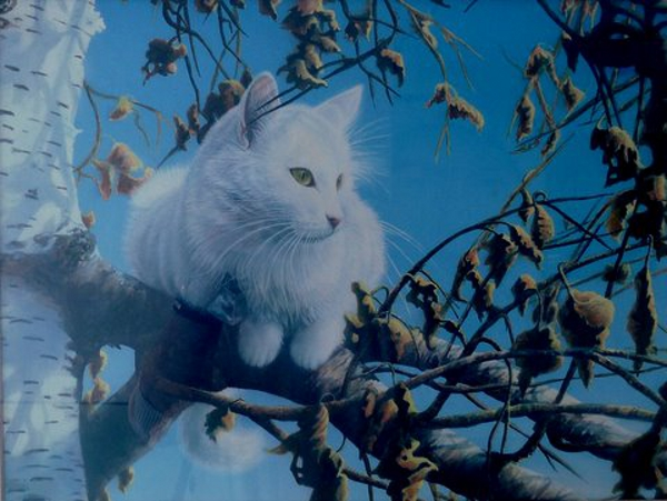 White Cat (Commission), (Acrylic) - Sold